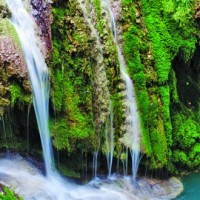 За природните чудеса, които Деветашкото плато пази