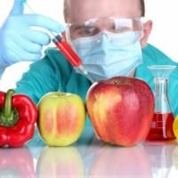 Истината за ГМО храните: Водят до тумори и рак