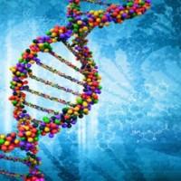 Ние не сме роби на гените си