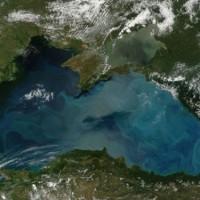 Ценна находка се намира в България, на дъното на Черно море и е открита през 1985 г.
